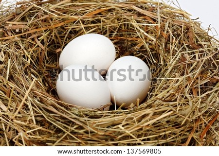 Close view of three white chicken eggs in hay nest