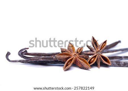 Close view of vanilla pods and anise stars. - stock photo