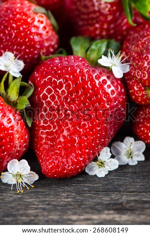 close view on fresh organic strawberry, vibrant red colors