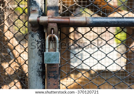 Closed metal lock door animal cage - stock photo