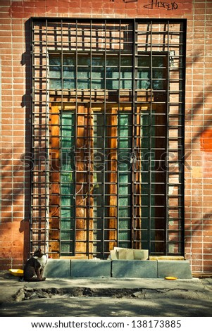 Closed old door with metal bars. Emergency exit, with the cat in the foreground. - stock photo