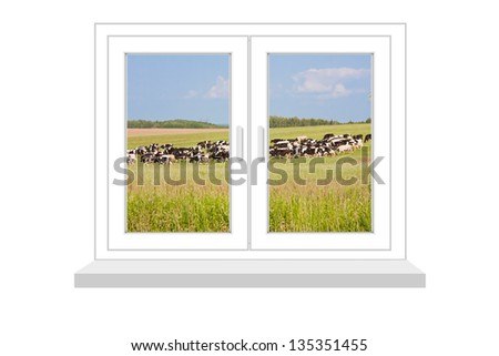 closed window with a kind on the herd of cows on a white background