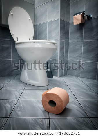 Closer look at the toilet paper on the floor and the toilet in the background