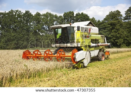 Closer to the big red harvester cutting down the ripe corn seeds - stock photo