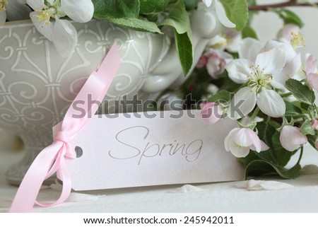 Closeup apple blossom flowers in vase with gift card  - stock photo