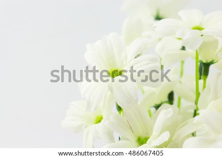 Closeup artificial white flower white background