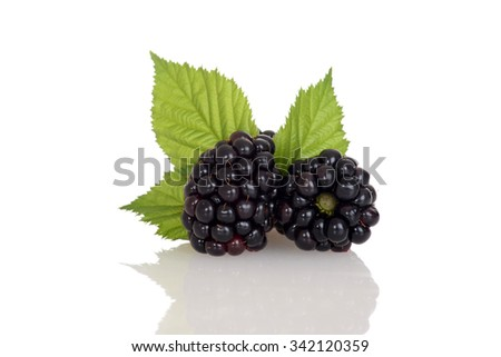 closeup blackberries with leaves - stock photo