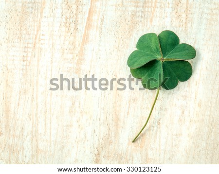 Closeup clovers leaves  setup on wooden background. - stock photo