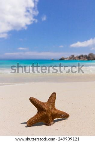 Closeup Detail Vacation  - stock photo