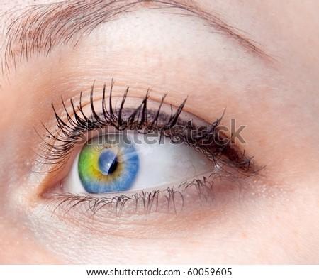 closeup eye-zone fullcolor - stock photo