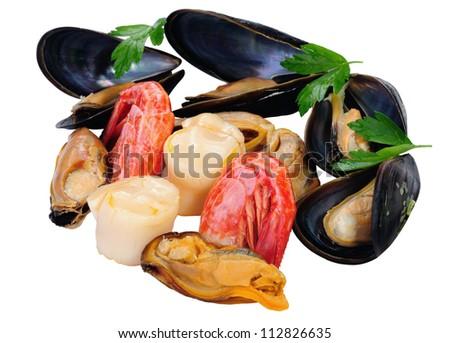 Closeup fresh seafood,  isolated on white. - stock photo
