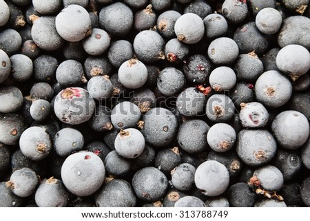 closeup frozen berries of black currant, food background - stock photo