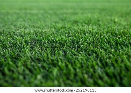 Closeup green fresh Cut focused Lawn on background - stock photo