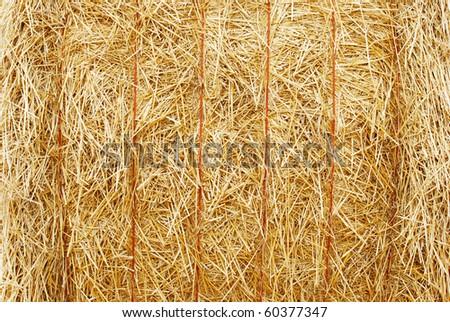 closeup hay bale - stock photo