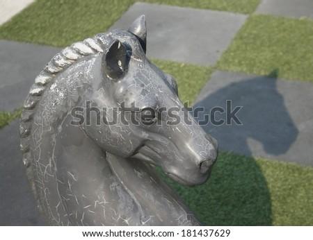 closeup head horse - stock photo