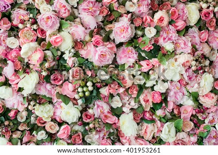 Closeup image of beautiful flowers wall background with amazing red and white roses. Top view - stock photo