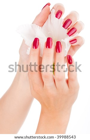Closeup image of beautiful nails and fingers with flower over isolated white - stock photo