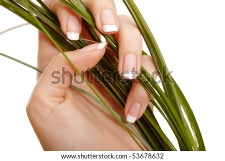 Closeup image of hand and grass - stock photo