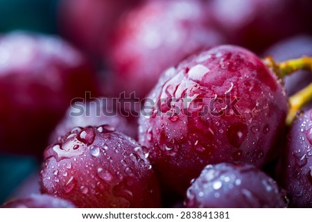 Closeup image of red grape covered in water drops - stock photo