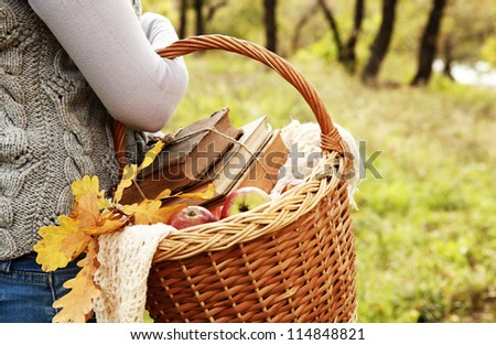 Closeup image picnic basket with apples, books and handmade shawl in woman hand - stock photo