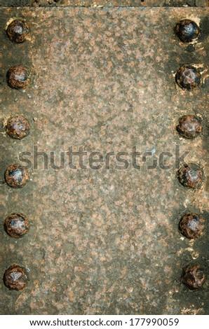 closeup nut like a frame for design - stock photo