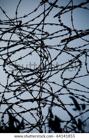 Closeup of a barbed wire over flat background