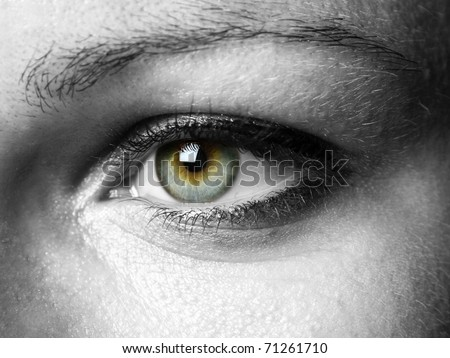 Closeup of a beautiful eye - stock photo