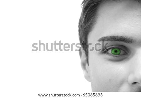 Closeup of a beautiful green eye: black and white image - stock photo