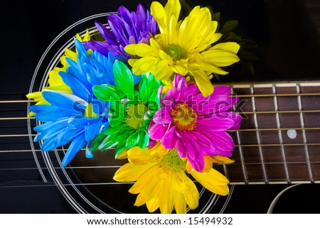 Closeup of a black acoustic guitar with bright multicolored daisies coming out of center - stock photo
