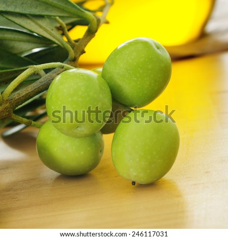 closeup of a branch of olive tree on a wooden table with a bottle of olive oil in the background - stock photo