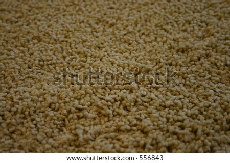Closeup of a Carpet - One - stock photo
