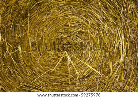 closeup of a circular straw bale for background usage - stock photo