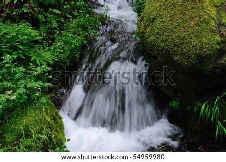 Closeup of a clear mountain spring - stock photo