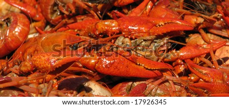 Closeup of a crawfish and crawfish claws. - stock photo