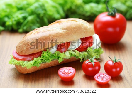 Closeup of a fresh sandwich with mozzarella and tomatoes - stock photo