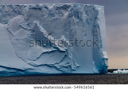 Closeup of a gigantic tabular iceberg in the Weddell sea around sunset. Image taken enroute from the South Orkney Islands to the Antarctic Peninsula.