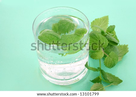 Closeup of a glass of ice water with fresh mint