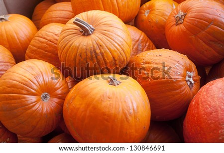 closeup of a group of harvested pumpkins - stock photo