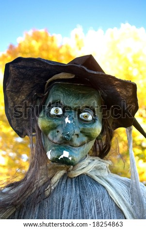 Closeup of a Halloween Witch against autumn background.