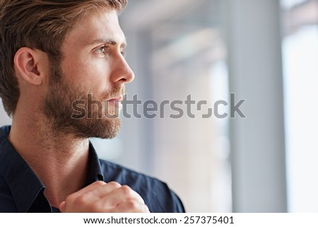 Closeup of a handsome bearded man looking away pensively - stock photo