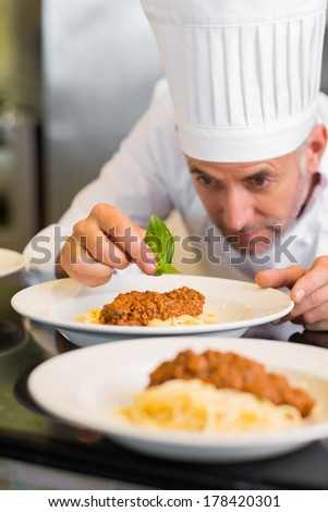 Closeup of a male chef garnishing food in the kitchen - stock photo