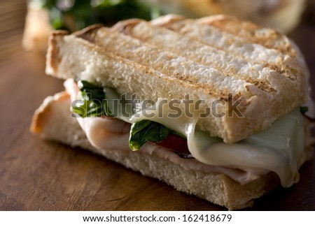 Closeup of a panini sandwich with turkey, melted cheese, tomato and spinach. - stock photo