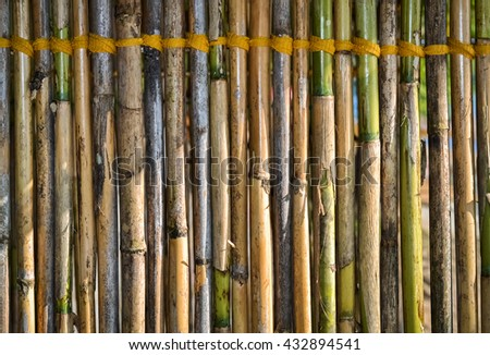 Closeup of a part of bamboo fence tied with yellow rope - stock photo