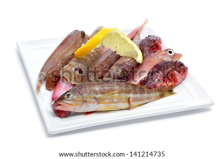 closeup of a plate with raw fishes on a white background - stock photo
