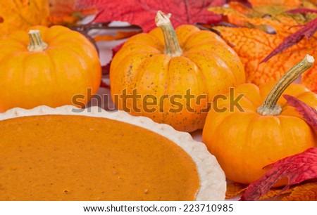 Closeup of a pumpkin pie among pumpkins and autumn leaves
