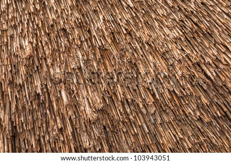 Closeup Of A Recently Thatched Roof Of A Dutch Windmill.
