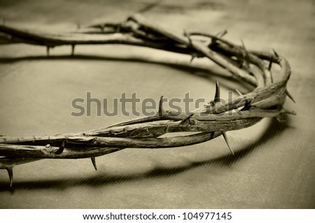 closeup of a representation of the Jesus Christ crown of thorns - stock photo