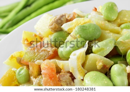 closeup of a salad with raw broad beans, tomato, tuna, boiled potato and boiled egg - stock photo