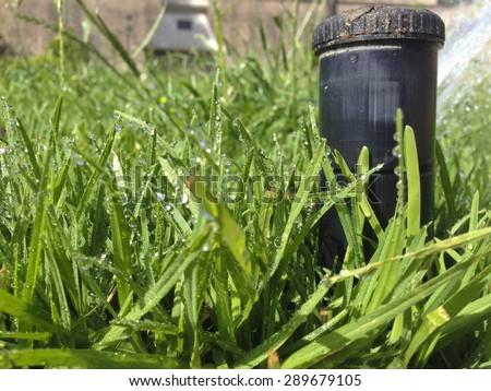 Closeup of a sprinkler watering a public park, Badajoz, Spain - stock photo