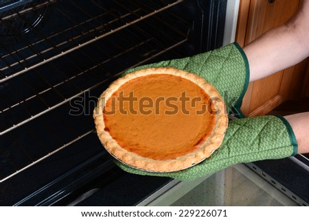 Closeup of a woman taking a fresh baked pumpkin pie from the oven. Pumpkin Pie is a traditional American dessert for Thanksgiving Day feasts. Horizontal with womans hands in oven mitts only. - stock photo